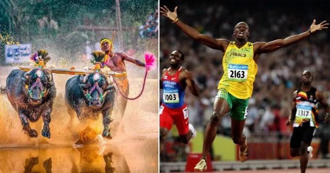 Buffalo Racing Usain Bolt