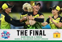 Women's T20 Cricket Final