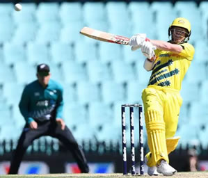 ODI Cricket David Warner